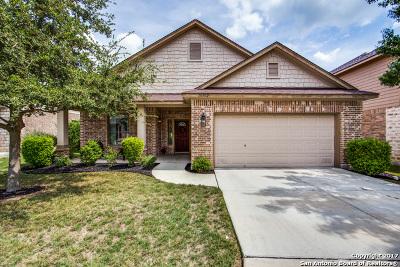 San Antonio Single Family Home New: 10302 Elizabeth Ct