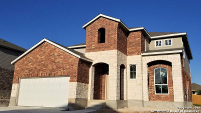 New Braunfels Single Family Home New: 2139 Flintshire Drive