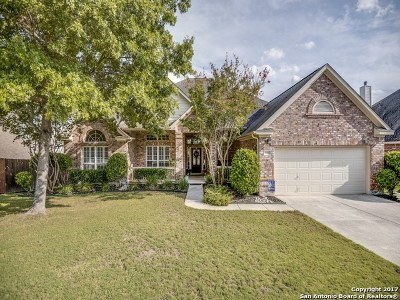 San Antonio Single Family Home New: 24010 Middle Fork