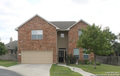 San Antonio Single Family Home New: 25707 Fan Flower