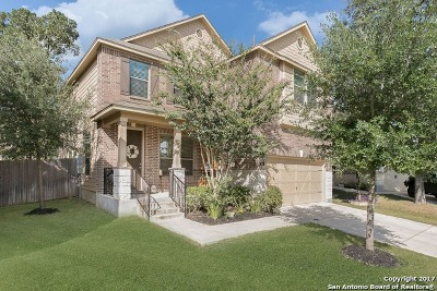 Boerne Single Family Home New: 121 Saddle Horn