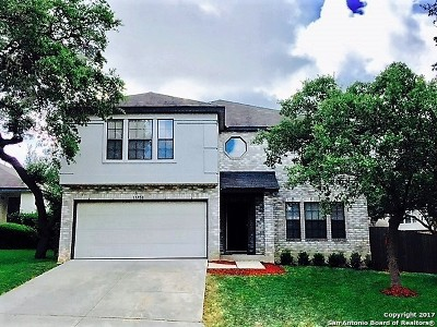 San Antonio Single Family Home New: 15958 Tampke Pl
