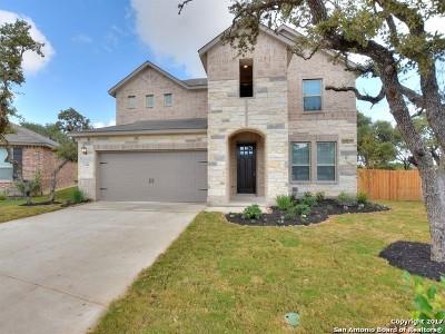 San Antonio Single Family Home New: 7146 Ravensdale