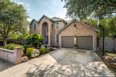 Bexar County Single Family Home New: 2466 Oakline Dr