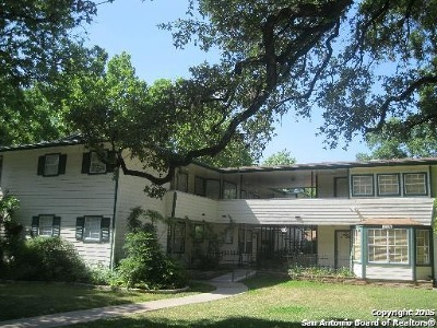 Alamo Heights Rental For Rent: 128 Mary D Ave #1