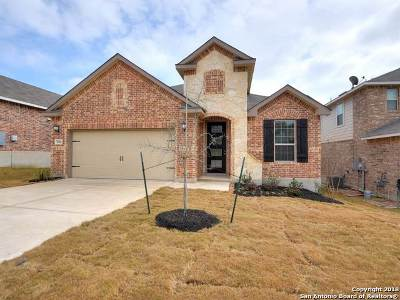 San Antonio Single Family Home For Sale: 7026 Ravensdale