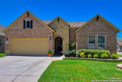 Helotes Single Family Home New: 10338 Salamanca