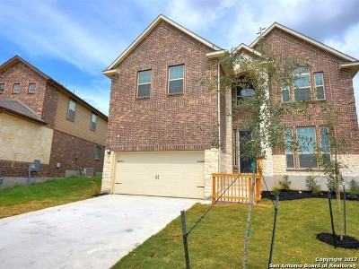 San Antonio Single Family Home New: 7118 Ravensdale