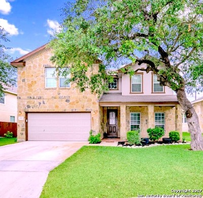 San Antonio Single Family Home New: 25851 Big Bluestem Dr.