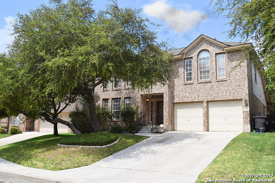 San Antonio Single Family Home New: 9739 Braun Run