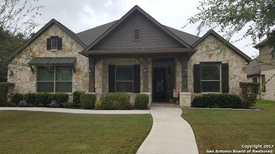 Single Family Home For Sale: 9519 Lesters Way
