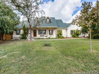 Helotes Single Family Home New: 9720 Mistletoe Cir