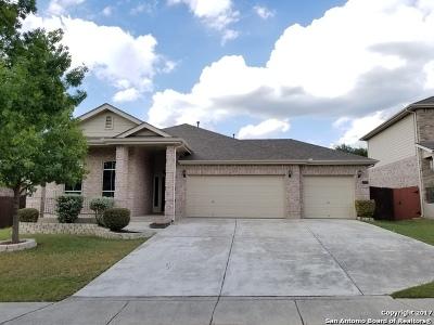 San Antonio Single Family Home New: 10623 Trotters Bay