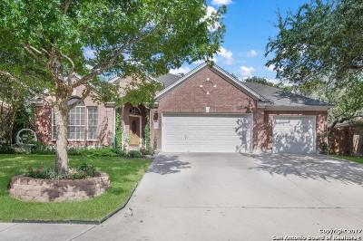 Schertz Single Family Home New: 3917 Arroyo Seco