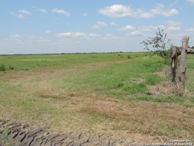 Wilson County Farm & Ranch For Sale: 24 Acres Out Of 7913 Fm 541 E