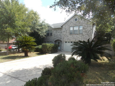 San Antonio Single Family Home New: 9126 Ridge Path