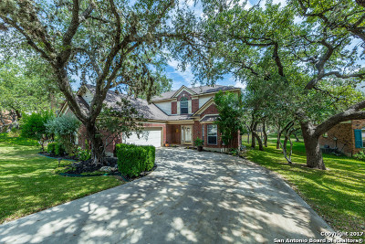 San Antonio Single Family Home New: 8506 Queen Hts