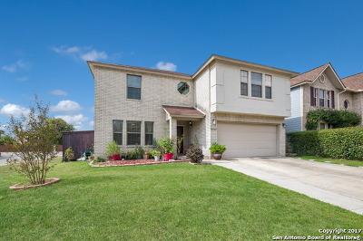 San Antonio Single Family Home New: 10502 Elderpond