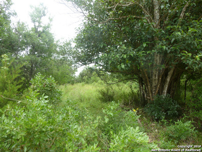 Selma Residential Lots & Land For Sale: Lot 12 Ventura