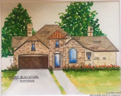 New Braunfels TX Single Family Home New: $349,000