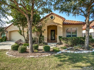 San Antonio Single Family Home New: 3411 Albizi Way