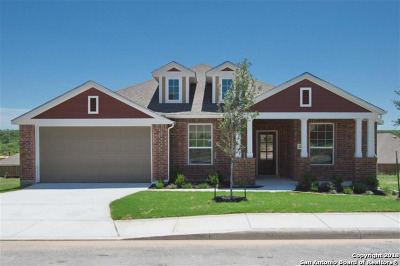 Bexar County Single Family Home For Sale: 2870 Tortuga Verde