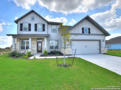 San Antonio Single Family Home New: 12016 Garden Shoot