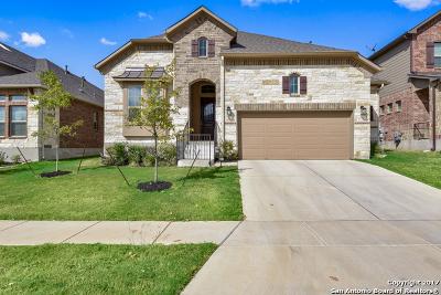 San Antonio Single Family Home For Sale: 21103 Capri Oaks