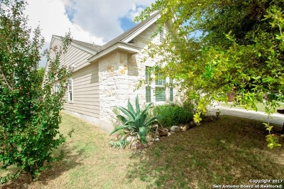 San Antonio TX Single Family Home Price Change: $205,000