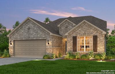 Helotes Single Family Home New: 11231 Rock Daisy