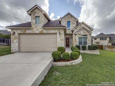 San Antonio Single Family Home New: 506 Sedberry Ct