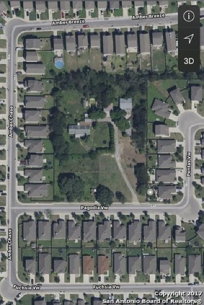 San Antonio Single Family Home New: 9865 Kriewald Rd