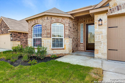 San Antonio TX Single Family Home New: $244,900