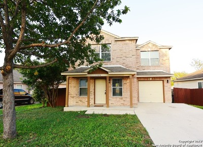 San Antonio Single Family Home New: 7324 Monte Seco