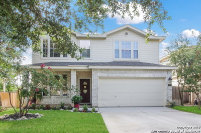 San Antonio TX Single Family Home New: $214,900