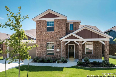 San Antonio TX Single Family Home New: $343,618