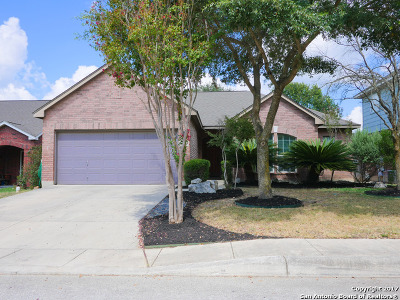 San Antonio TX Single Family Home New: $257,777