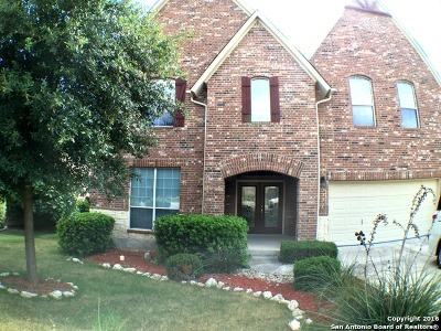 Cibolo Canyons Single Family Home For Sale: 23319 Treemont Park