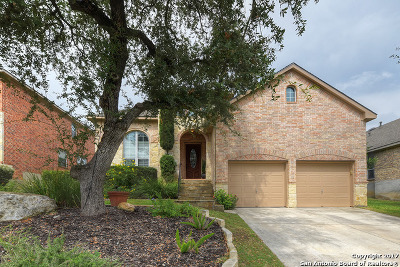 Single Family Home For Sale: 24031 Waterhole Ln