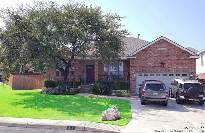 San Antonio Single Family Home Price Change: 314 Neches Br