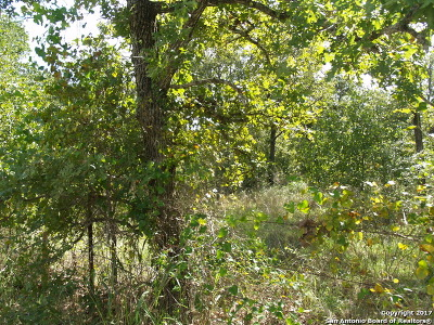 Guadalupe County Residential Lots & Land For Sale: 1350 Lot 3 Cross Rd
