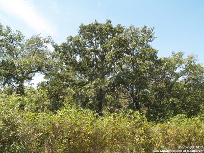 Guadalupe County Residential Lots & Land For Sale: 1350 Lot 6 Cross Rd