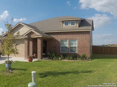 Seguin Single Family Home For Sale: 1404 Redbridge Drive