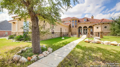 New Braunfels Single Family Home For Sale: 786 Haven Point Loop