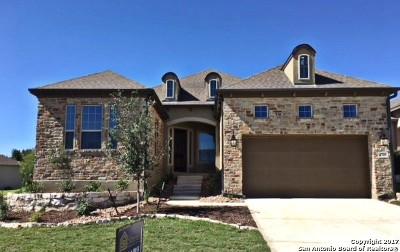 Bexar County Single Family Home For Sale: 4703 Amorosa Way