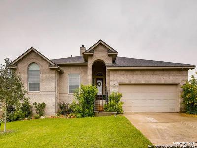 San Antonio Single Family Home For Sale: 20702 Pedregoso Ln