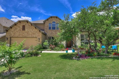 Boerne Single Family Home For Sale: 28107 Vine Cliff