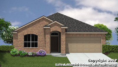 Guadalupe County Single Family Home For Sale: 409 Pearl Chase
