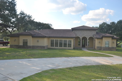 Medina County Single Family Home For Sale: 100 Lynx Circle