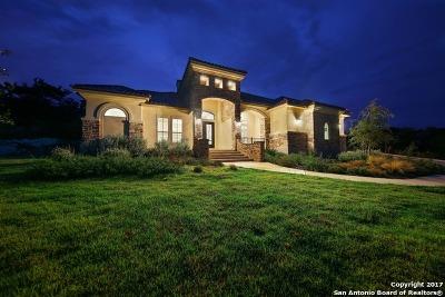 San Antonio Single Family Home For Sale: 10031 Ivory Cyn